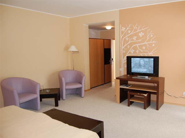 Cazare Brasov - Hotel Wolf 1