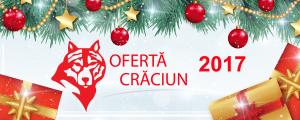 Oferta Craciun 2017